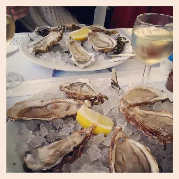 Oysters don't really taste like anything, and still I get a craving for them.