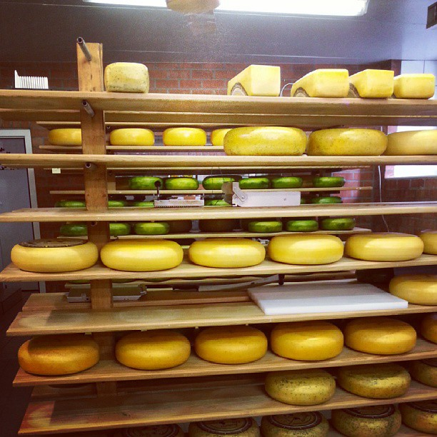 When Luxembourg had Open Doors for its companies, I of course headed to a cheese factory.