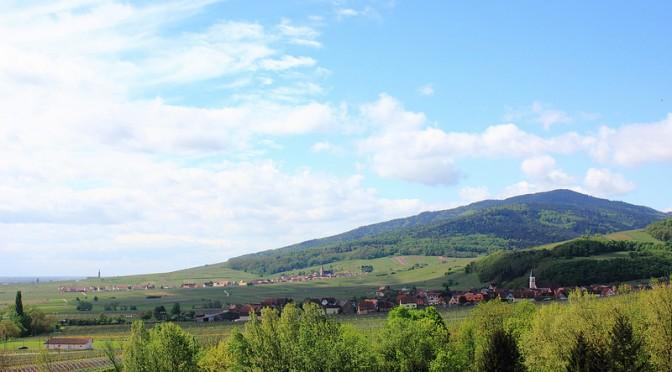Viinimaisemissa Alsacessa