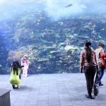 Maailman isoin akvaario