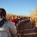 Syyshuveja: maissisokkelo, tynnyrijuna ja uppopaistettua kaikkea